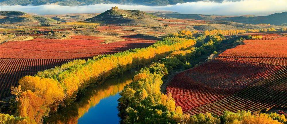 27 сентября в 19.30 - дегустируем Испанское вино